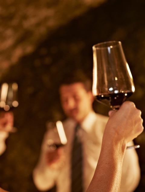 degustazioni vini lago di garda