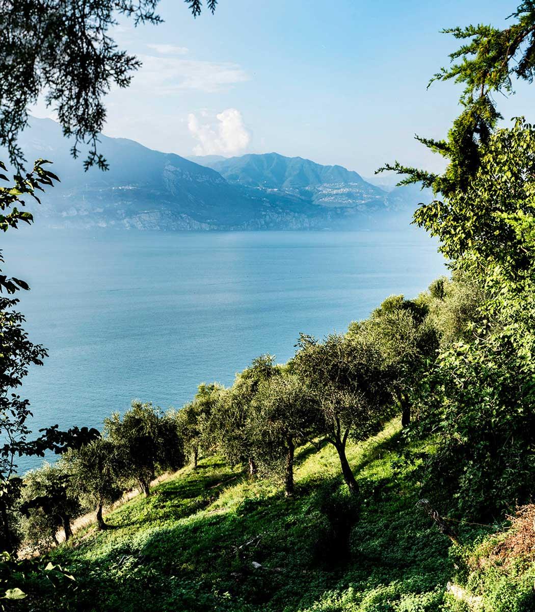 mills-the-lake-of-Garda