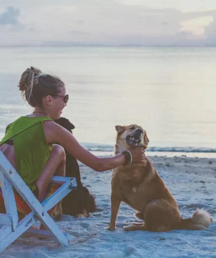 vacanza sul lago di garda con il tuo cane dove dormire
